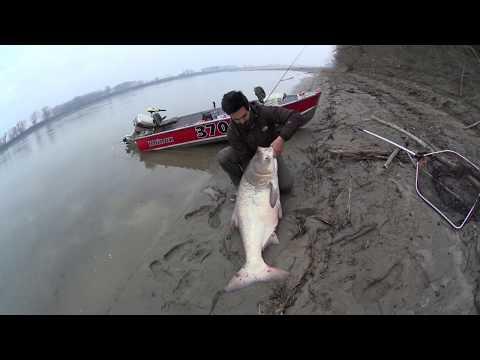 Film su rulli da pesca