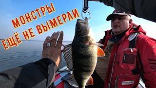 Рыбалка в весьегонске форум 2020 марта