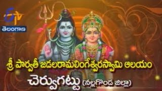 Sri Parvathi Jadala Ramalingeswara Swamy Temple, Cheruvugattu,Nalgonda TS తీర్థయాత్ర - 9th Mar 2015