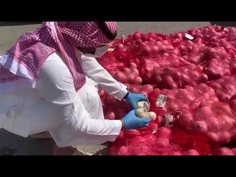 عاجل| شاهد.. ضبط 2 طن «بصل وشمندر» تالف قبل توزيعها بالدمام