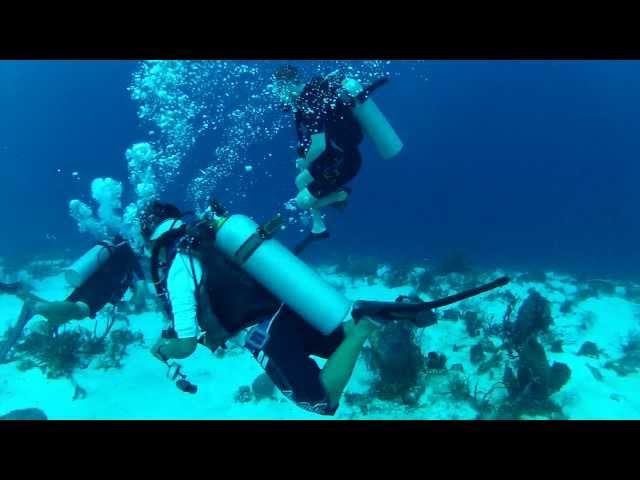 Santa Rosa Reef Scuba Dive - Cozumel, Mexico