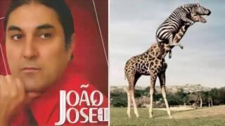 Musica do João José CD VOL I