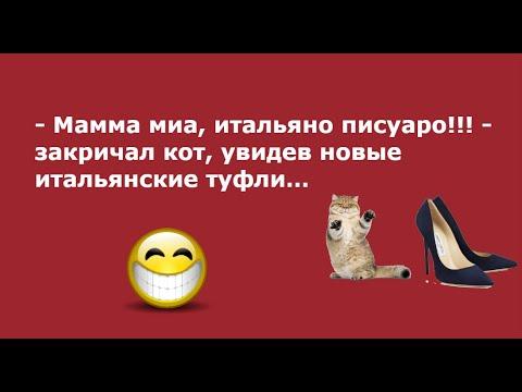 Не все знают, что Лев Толстой... Выпуск 74