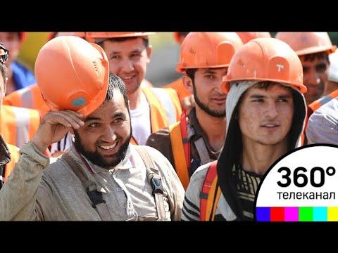 Доходы Московской области от мигрантов превысили 6 млрд рублей
