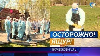 Новгородские специалисты совместно отработали ликвидацию эпидемии среди животных