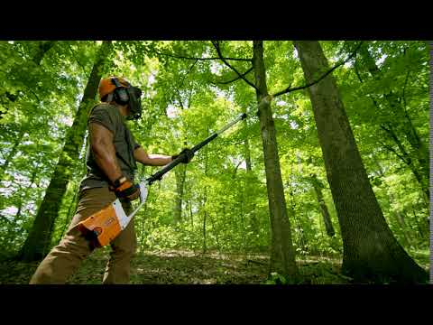 Stihl HTA 85 10 in. in Philipsburg, Montana - Video 1