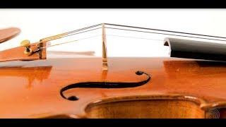 Ascente 1/2 Violin String Set: Medium