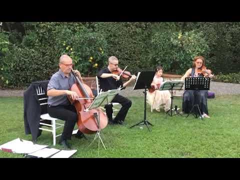 Barbara Andreini magici violini due violini classico elettrico Lucca musiqua.it