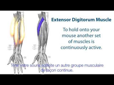 Fait mal la tête de la surtension des muscles du cou