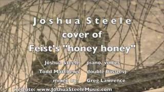 """""""Honey Honey""""  cover of Feist by Joshua Steele"""