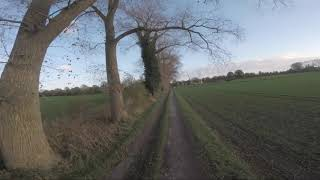 Trees, fields and FPV freestyle