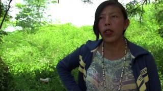 Problemáticas Territorios Indígenas, una mirada desde la MPC