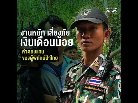 ข่าวเวิร์คพอยท์ | งานหนัก เสี่ยงภัย เงินเดือนน้อย ค่าตอบแทนของผู้พิทักษ์ป่าไทย
