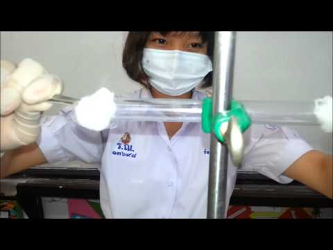 วงจรชีวิตของโรคมาลาเรียปรสิต