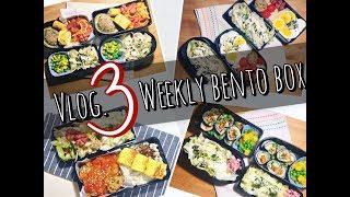 【潘野耶的小厨房】Vlog.3 Weekly Bento Box 这周午餐便当吃了什么?一盒火鸡肉末的四重变身