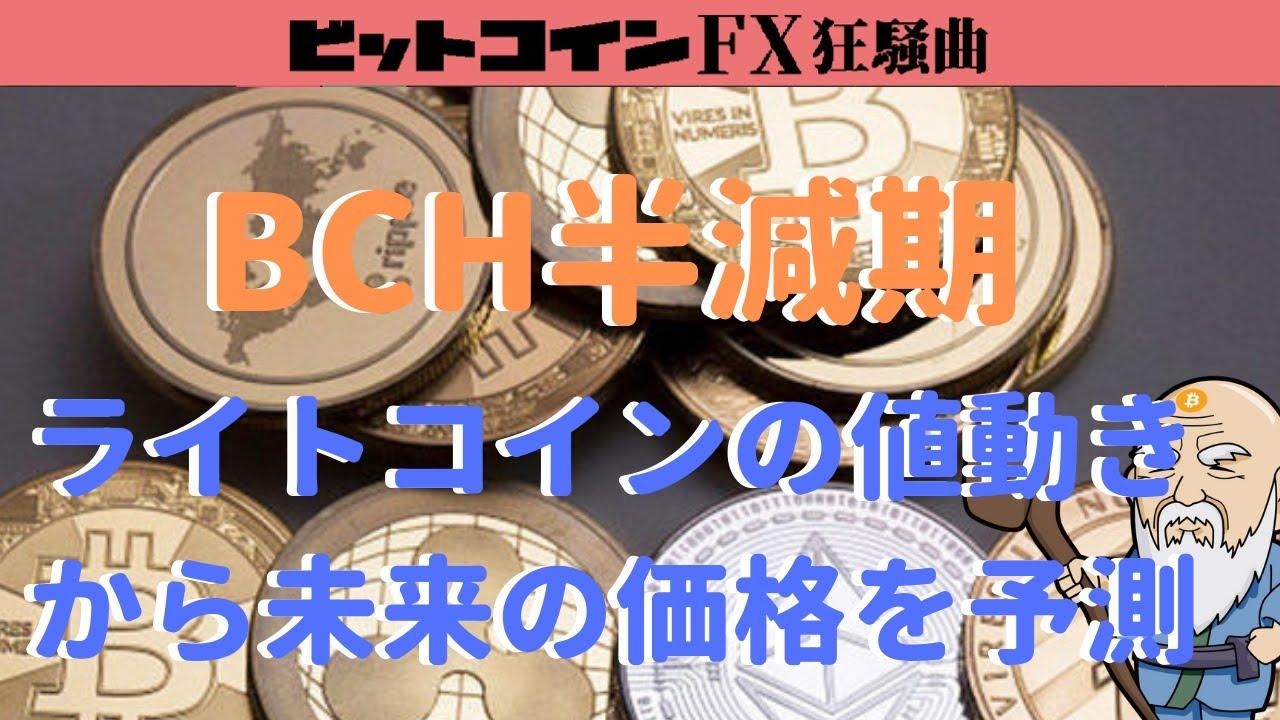 BCHの半減期後の予想価格をライトコインを例に考察【ビットコインキャッシュ】 #ビットコインキャッシュ #BCH #仮想通貨