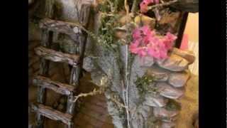 Planta Buganvilla para Belén
