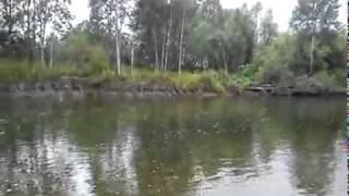 Все о рыбалке с майти байт