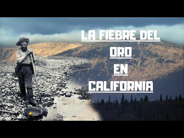 Wymowa wideo od ORO ORO na Włoski