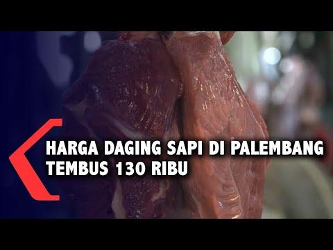 Harga Daging Sapi Di Palembang Tembus 130 Ribu