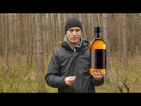 Rehabilitacji uzależnienia od alkoholu Kraj Ałtajski