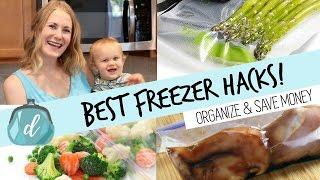 BEST way to freeze food & organize your deep freezer!