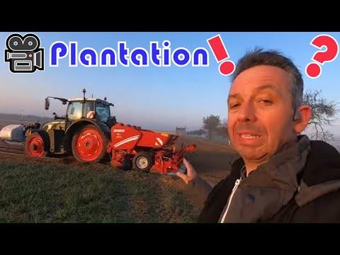 ? Plantation des Pommes de terre et petit calcul ? ? Plantation des Pommes de terre et petit calcul ?