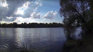 Ловля сома на москва реке с берега