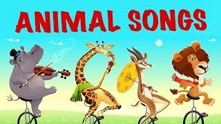 İngilizce  Bebek Ve Çocuk Şarkıları (Altyazılı) | İngilizce Çizgi Film Şarkıları | Akıllı Bıdık