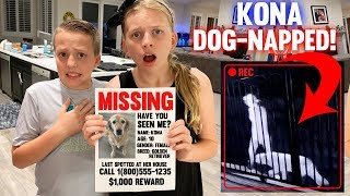 Someone Took Our Dog! || Mommy Monday