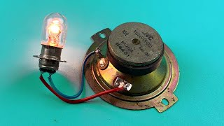 Free Energy Using Speaker Magnet 100% , Electric Science At home