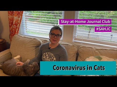 Stay-at-Home Journal Club #6 - Coronavirus in Cats