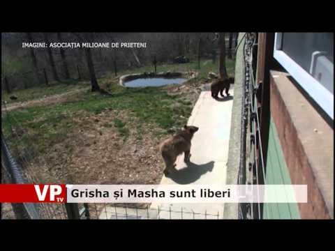 Grisha și Masha sunt liberi