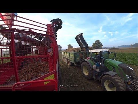 🕯🕯Holmer-Fendt-Hawe / Rübenernte - Beet Harvest  2018    2/4