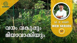 Kerala Forest Department and Miyawaki Method