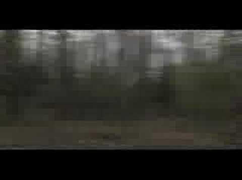 (Nice Dream) - Radiohead Music Video by fan