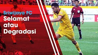 Ketua Tim SAR Sriwijaya FC Bicara tentang Kemungkinan Laskar Wong Kito Turun Kasta