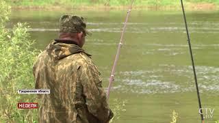 Рыбалка в гродно где что клюет