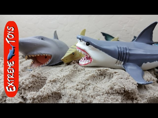 Surprise Shark toys hidden in Kinetic Sand!