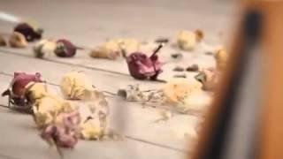 Паола - Любовь не игра