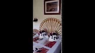 Cort y Paller del Pairot 9