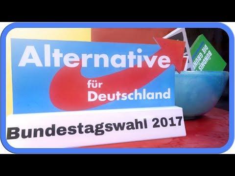 Die AfD erklärt | Bundestagswahl 2017
