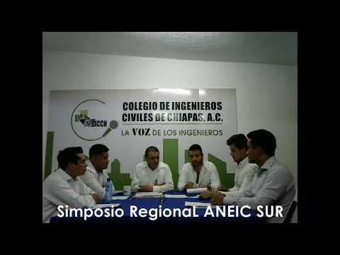 Simposio Regional ANEIC SUR