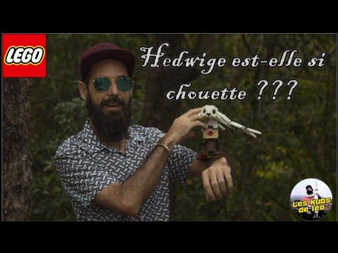 Vidéo LEGO Harry Potter 75979 : Hedwige