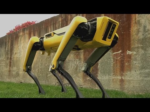 The New SpotMini Talking Robot