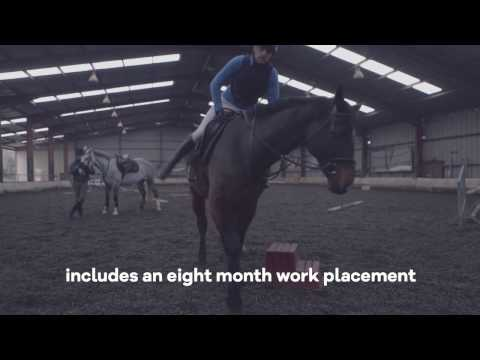LM180 Equine Science - University of Limerick - UL