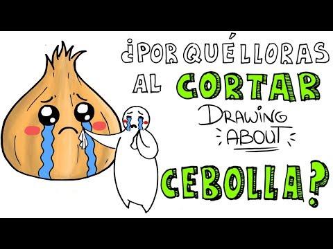 ¿POR QUÉ LLORAS AL CORTAR CEBOLLA? 😭   Drawing About con GlóbuloAzul