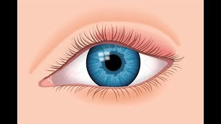 Swollen Eyelid: Causes & Treatment