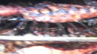 Tylers BBQ CAZ 04