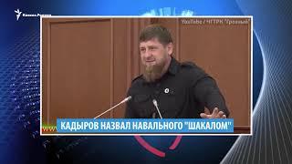 Кадыров против Навального и дагестанцы против Элджея